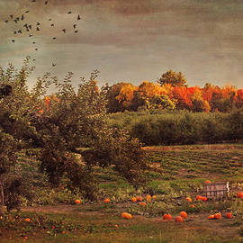 Joann Vitali - Pumpkin Patch in Autumn