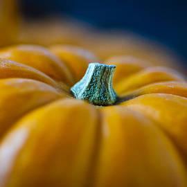 Pumpkin Time by Christi Kraft