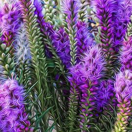 Purple Bouquet by Jeff Swanson
