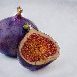Purple Fruits by Claudia Moeckel
