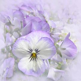 Purple Pansy Flowers by Jennie Marie Schell