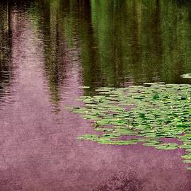 Purple Pond Reflections by Patricia Strand