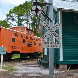 Railroad Crossing by Carol  Bradley