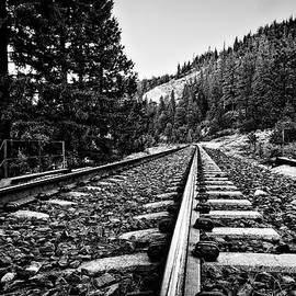 Railroad Tracks  by Maria Coulson