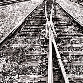 Olivier Le Queinec - Railroad Tracks