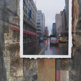 Anita Burgermeister - Rain Wisconcin Ave tall view