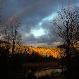 Mim White - Rainbow Heart