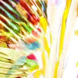 Michele Monk - Rainbow of colors