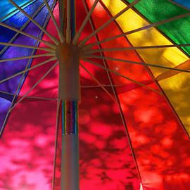Ginny Schmidt - Rainbow Shadows