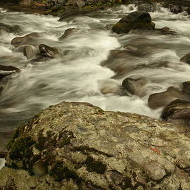 Rapids along the American River. by Jeff Swan