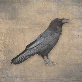 Julie Magers Soulen - Raven Digital Art in Old World Antique Style