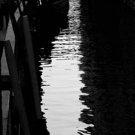 Lisa Parrish - Reaching Back - Venice