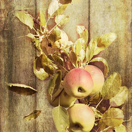 Pam  Holdsworth - Ready For Picking