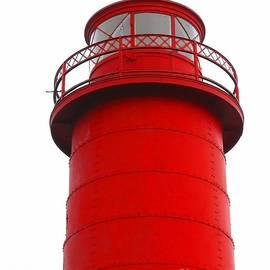 Ann Horn - Really Red Lighthouse