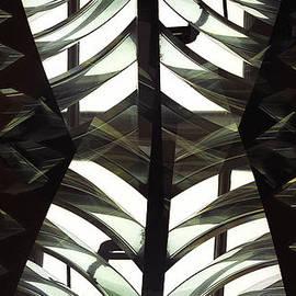 Thomas Carroll - Glass Torso