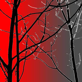 Red And Gray by Cynthia Guinn