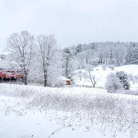 Donna Doherty - Red Barn in Winter Wonderland
