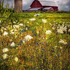 Red Barns in the Wildflowers by Debra and Dave Vanderlaan