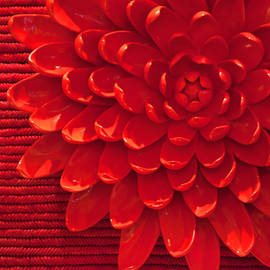 Art Block Collections - Red Chrysanthemum Display