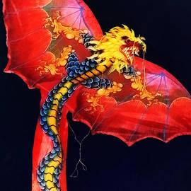 Susan Savad - Red Dragon Kite