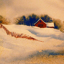 Teresa Ascone - Red Fence