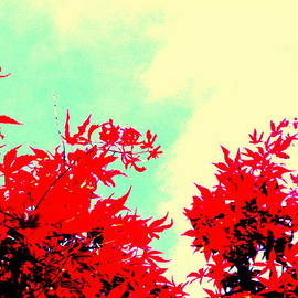Red Leaves Abstract by Kathy Barney