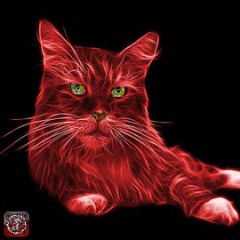 James Ahn - Red Maine Coon Cat - 3926 - BB