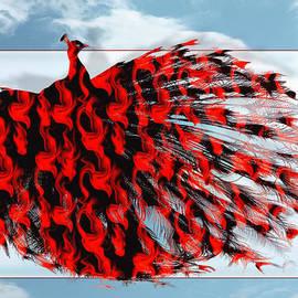 Red Peacock by Yvon van der Wijk