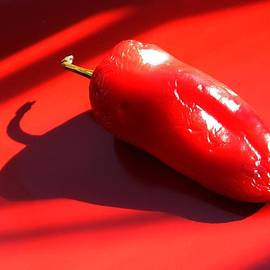 Red Pepper by Sarah Loft