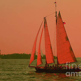 Nick Wardekker - Red sails in the sunset