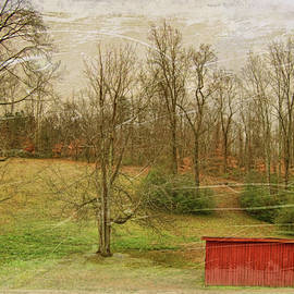 Paulette B Wright - Red Shed