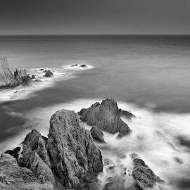 Guido Montanes Castillo - Reef