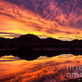 Robert Bales - Reflected Sunrise
