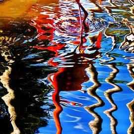 Chuck  Hicks - Reflection Of A Flamingo 1