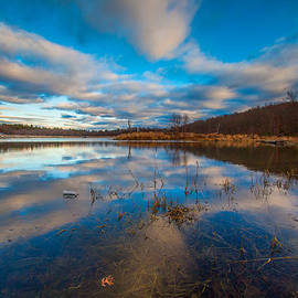 Brian MacLean - Reflections