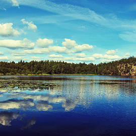 Nicklas Gustafsson - Reflections of nature
