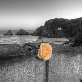 Remembrance by HW Kateley