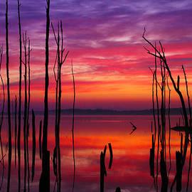 Reservoir at Sunrise