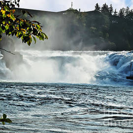 Rhine Falls by Elvis Vaughn
