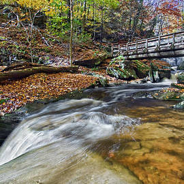 Ricketts Glen Cascade  by Marcia Colelli