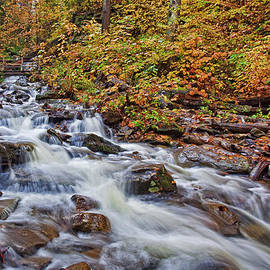Ricketts Glen Rapids and Bridge by Marcia Colelli
