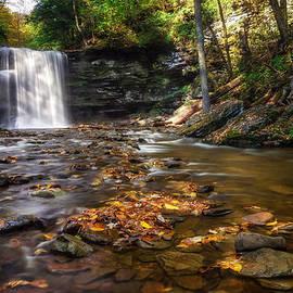 Mark Papke - Ricketts Glen Waterfall
