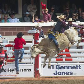 Bill Cubitt - Ride em Cowboy