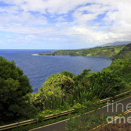 Road to Hana by Richard Lynch