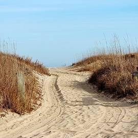 Road To The Beach by Cynthia Guinn