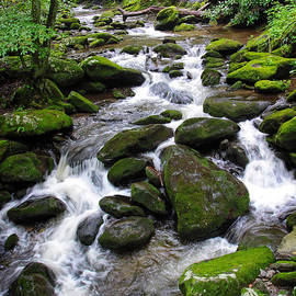 Roaring Fork Cascade by Harold Rau