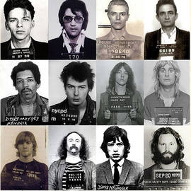 Rock and Roll's Most Wanted - Part II