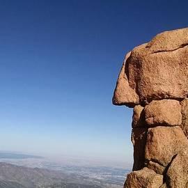 Profile in Stone