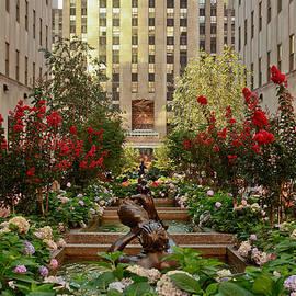 Rockefeller Center by Ann Murphy
