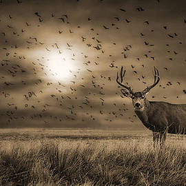 Priscilla Burgers - Rocky Mountain Arsenal Buck Deer and Birds